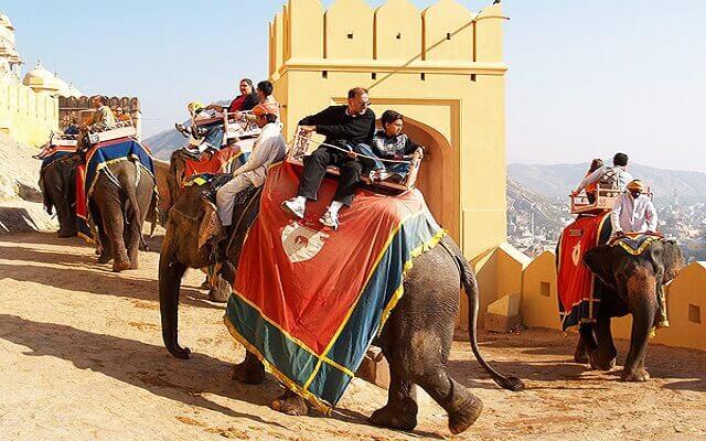 Elephant Safari in jaipur.